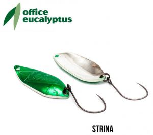 Office Eucalyptus Strina